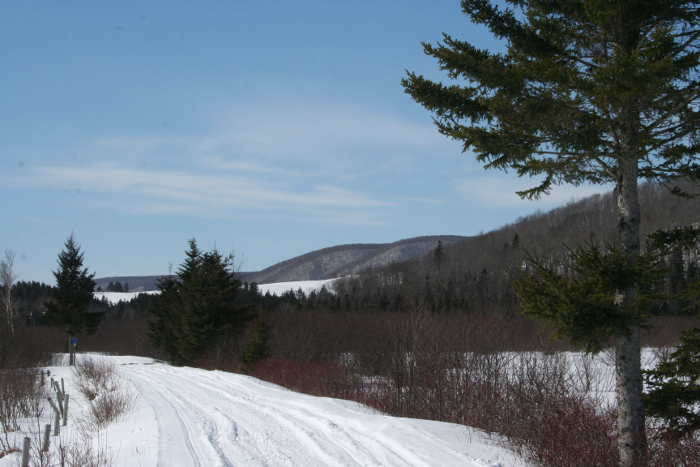 ski trails and mountains